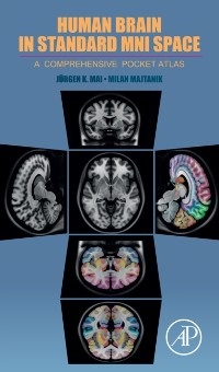 Cover Human Brain in Standard MNI Space