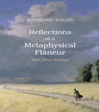 Cover Reflections of a Metaphysical Flaneur