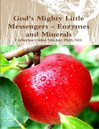 Cover God's Mighty Little Messengers - Enzymes and Minerals