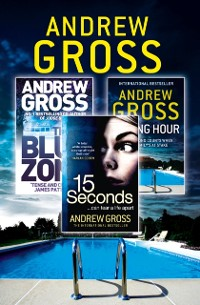 Cover Andrew Gross 3-Book Thriller Collection 2: 15 Seconds, Killing Hour, The Blue Zone