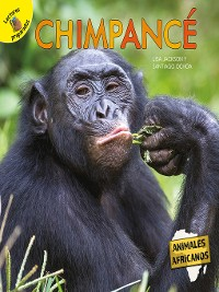 Cover Chimpancé