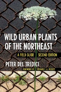 Cover Wild Urban Plants of the Northeast