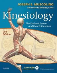 Cover Kinesiology - E-Book