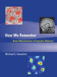 Cover How We Remember
