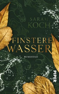 Cover Finstere Wasser