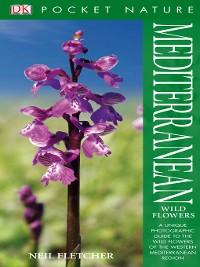 Cover Mediterranean Wildflowers