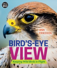 Cover Bird's-Eye View