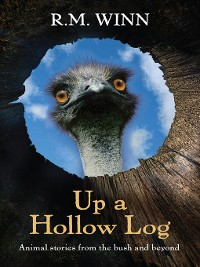 Cover Up a Hollow Log