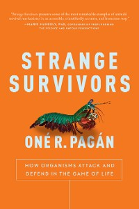 Cover Strange Survivors