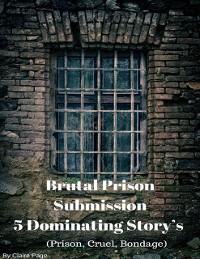 Cover Brutal Prison Submission - 5 Dominating Story's (Prison, Cruel, Bondage)