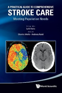 Cover Practical Guide To Comprehensive Stroke Care, A: Meeting Population Needs