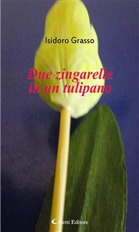 Cover Due zingarelle in un tulipano