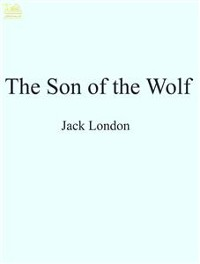 Cover The Son of the Wolf