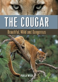 Cover The Cougar