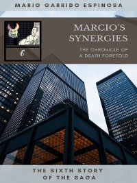 Cover Marcio's Synergies 6