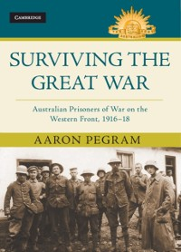 Cover Surviving the Great War