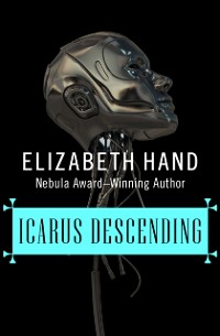 Cover Icarus Descending