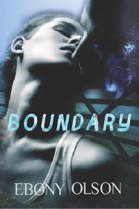 Cover Boundary