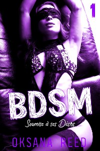 Cover BDSM // Tome 1