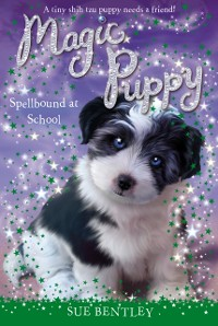 Cover Spellbound at School #11