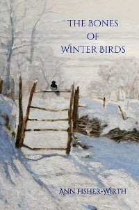 Cover The Bones of Winter Birds