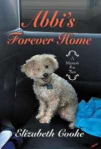 Cover Abbi'S Forever Home