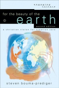 Cover For the Beauty of the Earth (Engaging Culture)