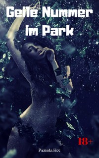 Cover Geile Nummer im Park