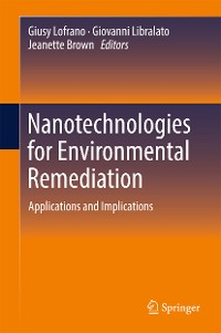 Cover Nanotechnologies for Environmental Remediation