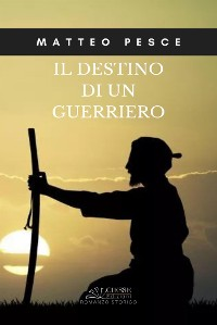 Cover Il destino di un guerriero