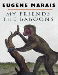 Cover My Friends the Baboons