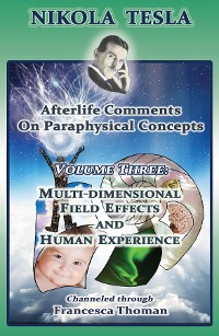 Cover Nikola Tesla: Afterlife Comments on Paraphysical Concepts