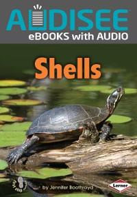 Cover Shells