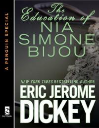 Cover Education of Nia Simone Bijou
