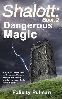 Cover Shalott: Dangerous Magic