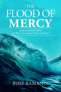 Cover The Flood of Mercy