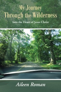 Cover My Journey Through the Wilderness