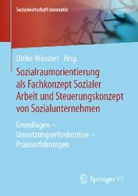 Cover Sozialraumorientierung als Fachkonzept Sozialer Arbeit und Steuerungskonzept von Sozialunternehmen