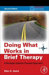 Cover Doing What Works in Brief Therapy