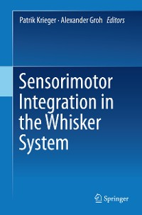 Cover Sensorimotor Integration in the Whisker System