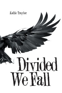 Cover Divided We Fall