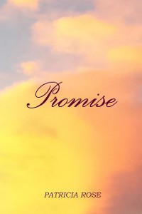 Cover Promise