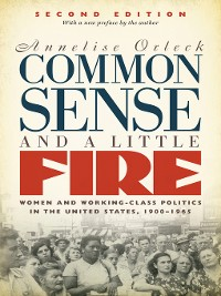 Cover Common Sense and a Little Fire