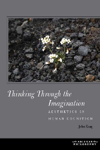 Cover Thinking Through the Imagination