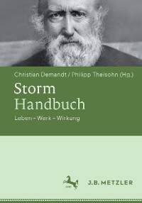 Cover Storm-Handbuch