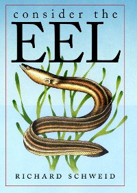 Cover Consider the Eel