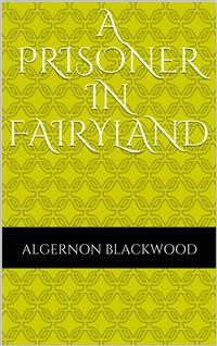 Cover A Prisoner in Fairyland