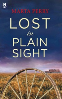 Cover Lost in Plain Sight (Brotherhood of the Raven)