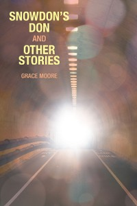 Cover Snowdon's Don and Other Stories
