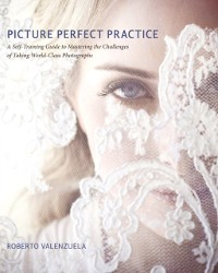 Cover Picture Perfect Practice